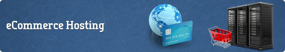 Top E-commerce Web Hosting
