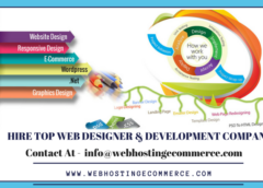 How to Hire  Best Website Designing Company & Freelancer In Delhi ncr